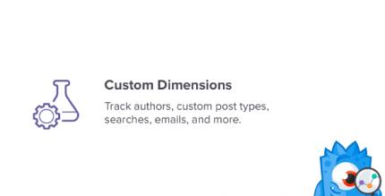 monsterinsights-custom-dimensions-addon